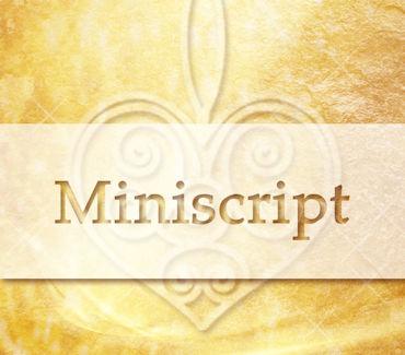 miniscript1